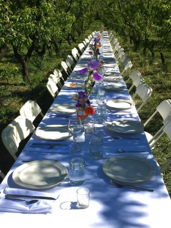 Feasting in the Orchard  – 2019